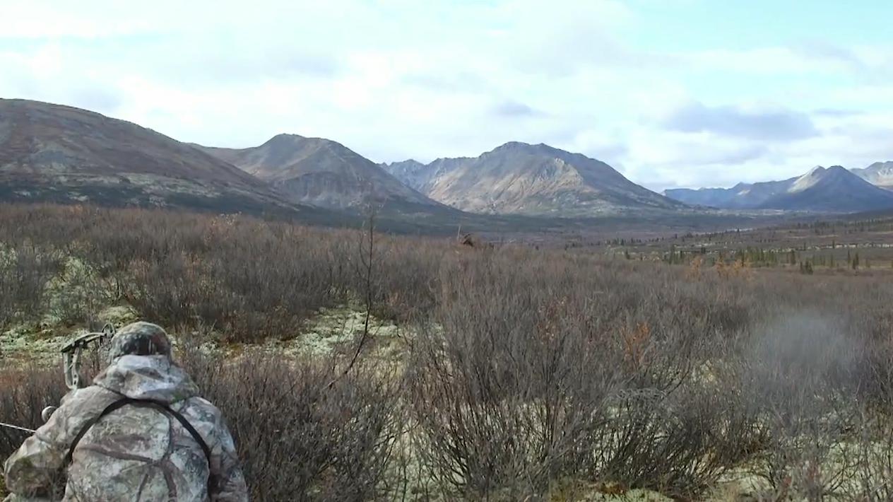 Yukon Moose Hunting: Back At It