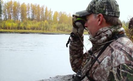 bowhunting moose