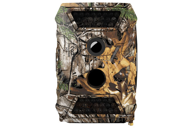 best-trail-cameras-for-whitetail