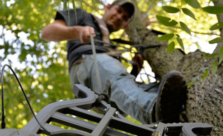 how-and-when-to-hang-a-treestand