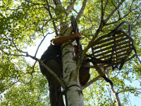treestands-hanging-essentials-tools