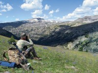 how-to-bowhunt-stalk-mountain-mule-deer