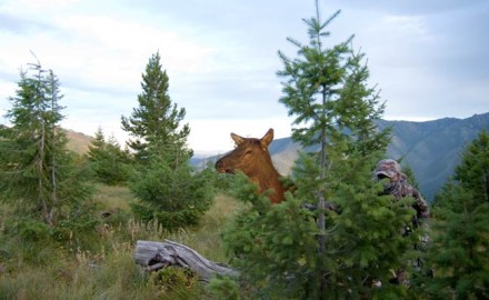 For those of us heading into the elk woods with the hopes of a close encounter with a rutting bull,