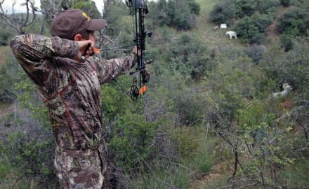 archery-tips-for-bowhunting
