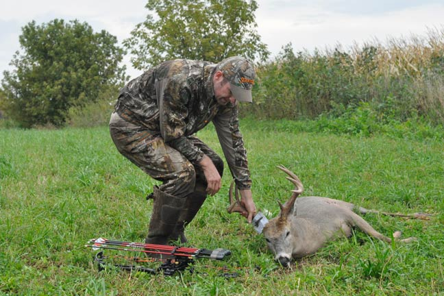 Whitetail Shape: Does Fitness Have Its Place?
