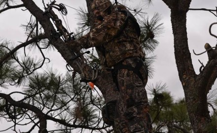 We have a weird situation going on in the bowhunting industry that involves the one-percenters