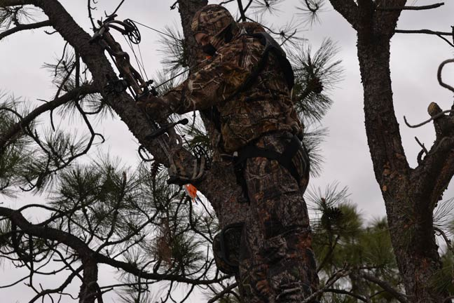 Real-World Bowhunting Advice