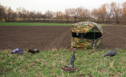 Q: I have been bowhunting spring gobblers for several years, with no luck. What can I do to