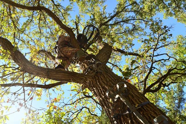 Hang-Treestands