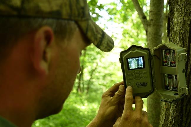 Trail-Camera-Video