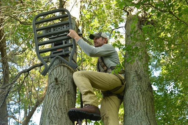 Best Treestand Strategies For Targeting Mature Bucks