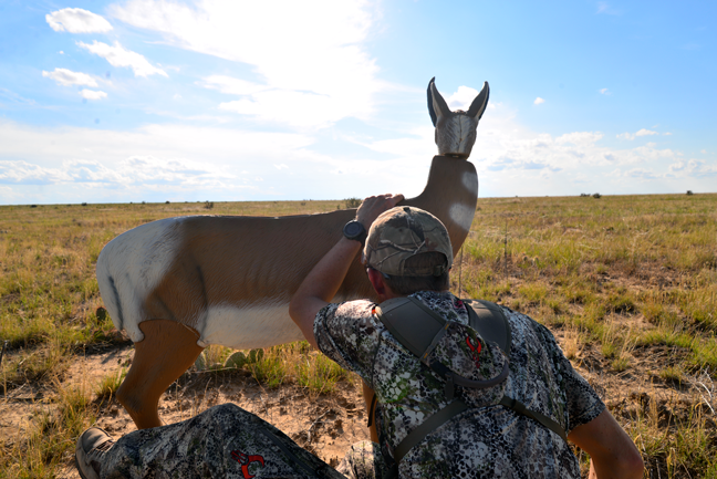 Antelope-Guide