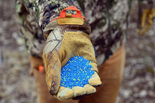 Don't Begin Without the Right Food Plot Seeds