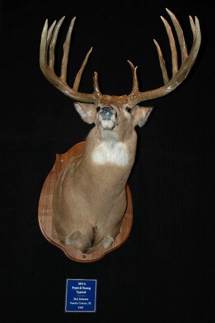 Mel-Johnson-Record-Buck