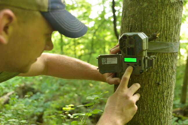 7 New Trail Cameras Just in Time for Summer Scouting