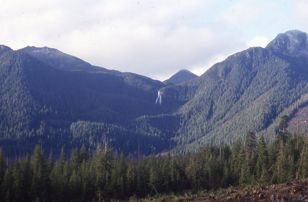 //www.bowhunter.com/files/hunting-sitka-deer-on-a-budget/5mtn.jpg