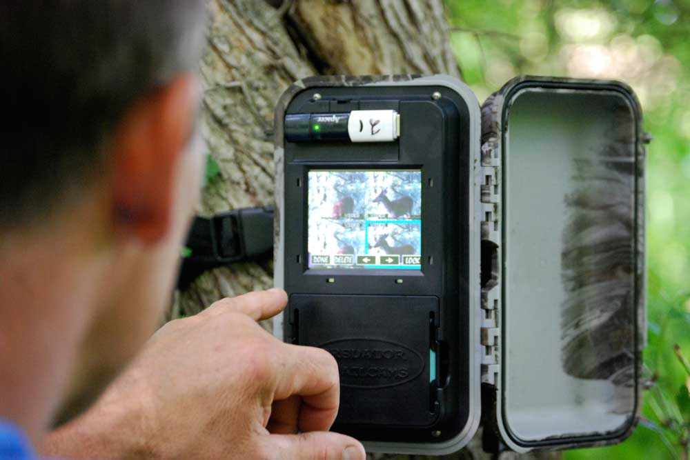 //www.bowhunter.com/files/recon-the-right-way-10-ways-to-improve-trail-camera-efficiency/visual-follow-up_1.jpg
