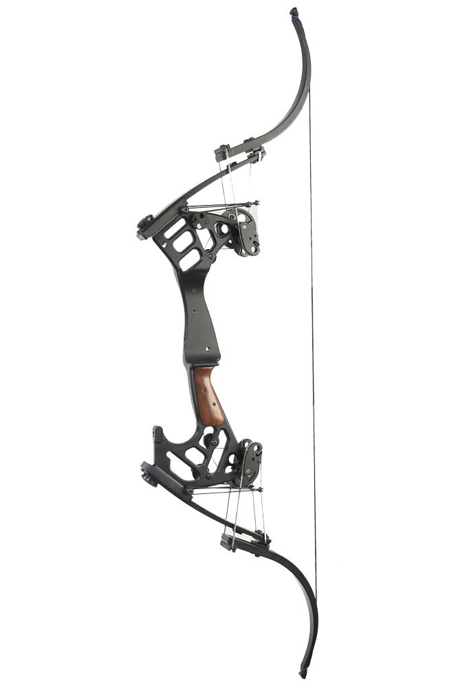 //www.bowhunter.com/files/the-best-new-compound-bows-for-2014/cp_eagle.jpg