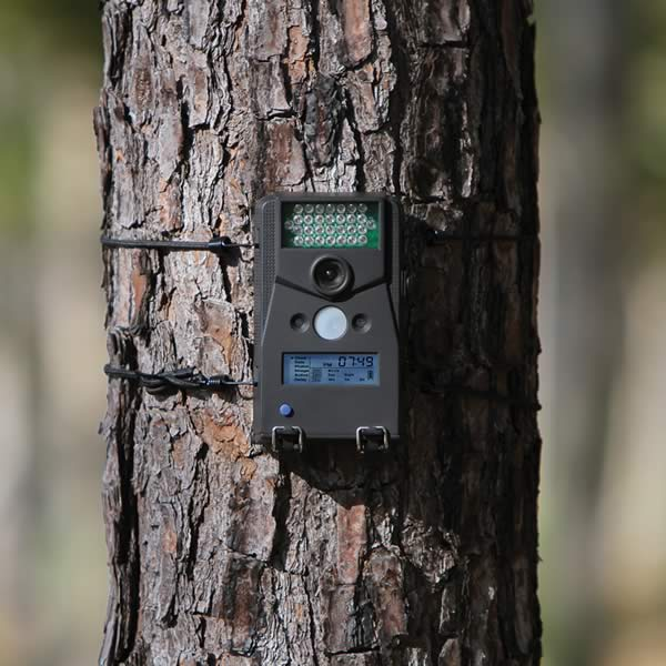 //www.bowhuntingmag.com/files/10-best-trail-cameras-for-bowhunters/01_micro6red.jpg