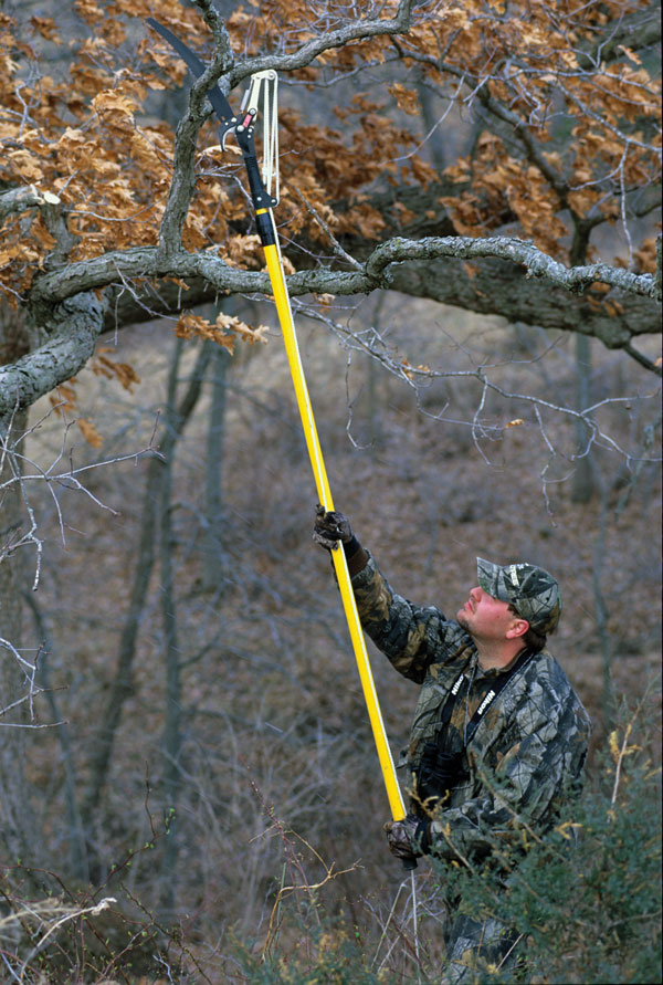 //www.bowhuntingmag.com/files/10-best-treestand-hunting-tips/005_when-to-put-them-up.jpg