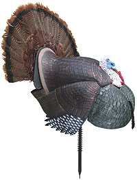 By Bowhunting Staff Report    The full-strut Casanova Decoy from Ol' Tom offers a