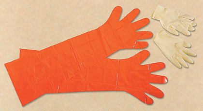 By Kathy Etling    A set of Redhead Game Cleaning Gloves from Bass Pro will help