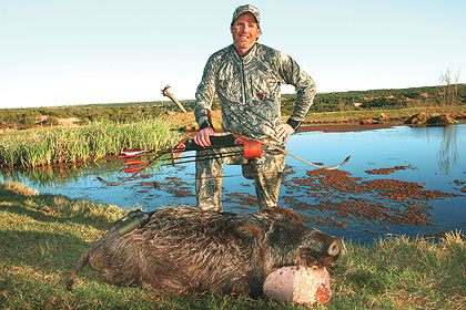 The exciting, and sometimes dangerous, business of bowhunting wild boars.