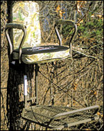 Tree Stand Buyers Guide