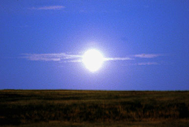 What Time of the Day is Best for Hunting Deer During a Full Moon?