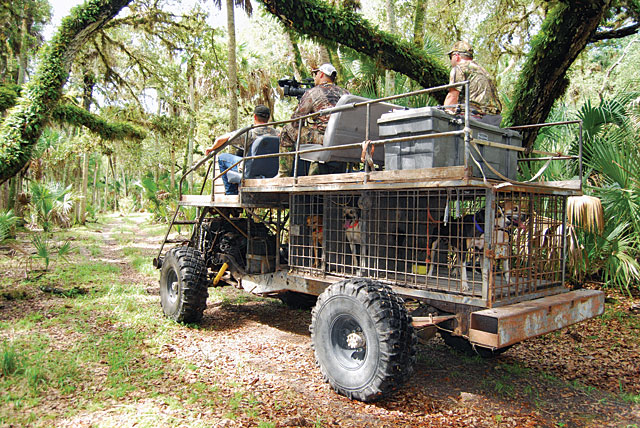 Big Dog Truck Outfitters