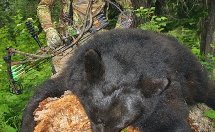 I was making preparations for Idaho's spring bear season and had a chance encounter with our