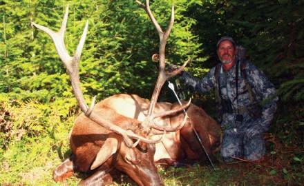 Meitin-Elk-Hero-Shot