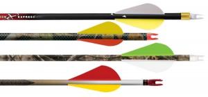 Carbon-arrows