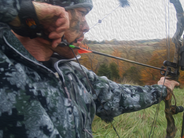 10 Great Compound Bows Under $700