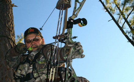 Today's compound bows come in all shapes and sizes. The industry itself is filled with mixed