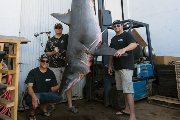 Catch of a Lifetime: Jeff Thomason's Bowfishing World Record Mako Shark