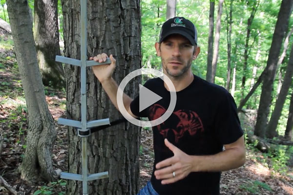 BOWHUNTING's Guide to Finding the Perfect Treestand Locations