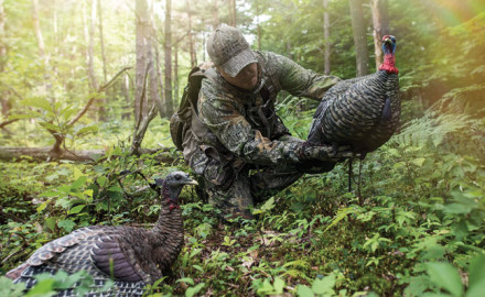 Follow these tips to lure in more gobblers!