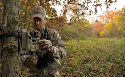 Winke-how-to-scout-for-whitetail-in-the-summer