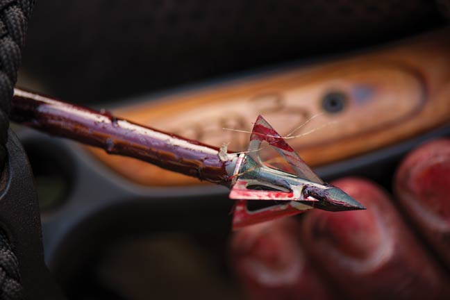 The Holy Grail: When Broadheads Fly Like Fieldpoints