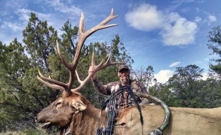 tactics-for-calling-elk