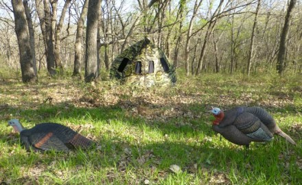 DIY-Turkey-Hunt