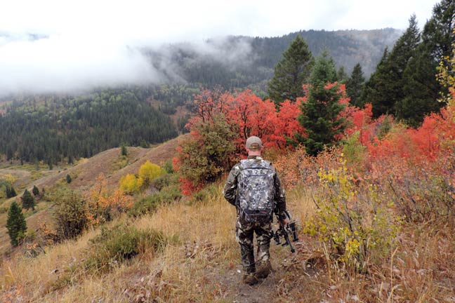 Why Deer Tactics Help With Elk-Hunting Success
