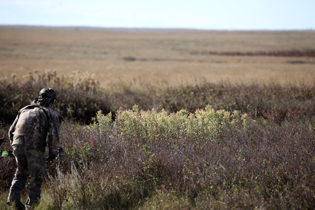 Spot-and-Stalk Success on Prairie Mule Deer Bucks