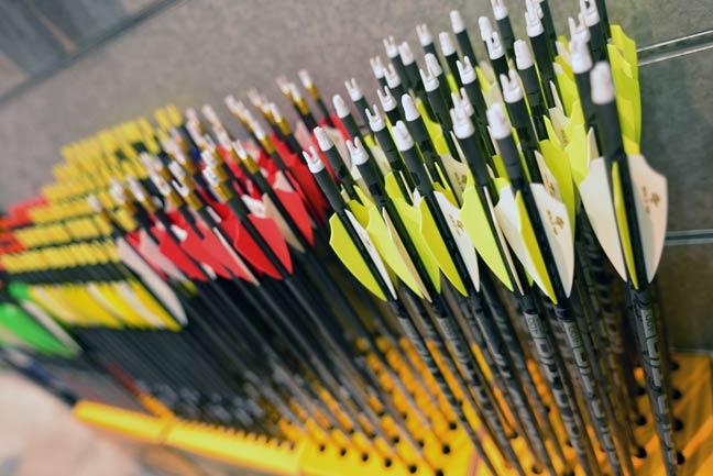 Gold-Tip-Arrows-ATA-lead