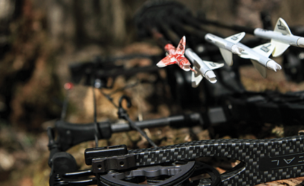Find out why Randy Ulmer shoots skinny arrows for hunting any species.