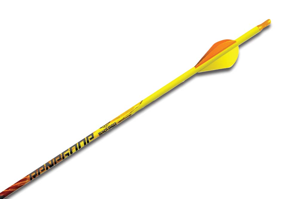 //www.bowhuntingmag.com/files/hot-new-arrows-for-2015/black_eagle.jpg