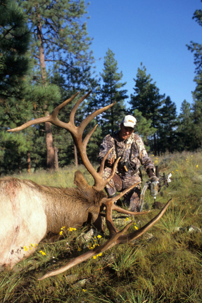 //www.bowhuntingmag.com/files/top-10-diy-elk-states-for-2014/diy_elk_newmexico.jpg