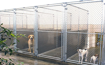 Since the 1920s, Mason Company has designed and manufactured outdoor and indoor kennel runs...