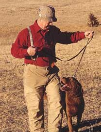 A refresher course on the basics will get your Gun dog ready for the season.